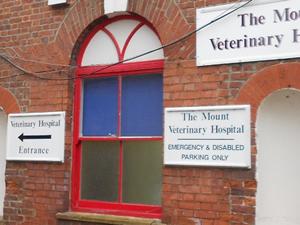 mount_vet