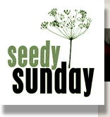 seedy Sunday logo